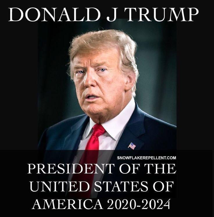 Meme-Pres-of-USA-2020-2024