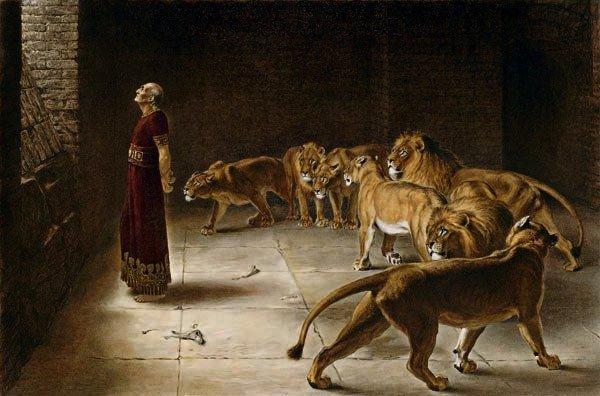 Daniel-Lions1