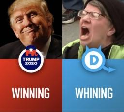 Liberals 2020-10-20
